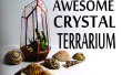 Geometrische Crystal Terrarium aus CD-Hüllen