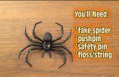 Wie die Spinne über der Tür-Streich abziehen!
