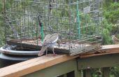 Der große Vogel und Eichhörnchen Beweis Futterhäuschen