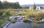 Garten-Stream - Build eines Baches oder Creek / natürlichen filter für Teich
