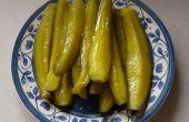 Einfach zu Hot & Sweet Pickle Speere machen