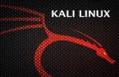 Internet-Shops mit Burpsuite und Kali Linux Hacker