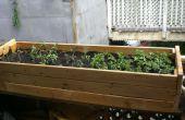 Aufbau eine Pflanze-Box von einem alten Futon-Basis