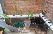 Gewusst wie: einrichten und betreiben ein Hydrokultur-System