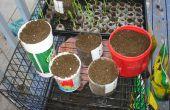 Machen Ihre eigenen Hause Garten Behälter aus Kunststoff-Flaschen