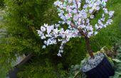 DIY-Sakura - Cherry Blossom Baum mit Papier (mit Video)