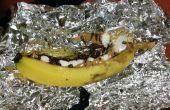 Banana-Boat