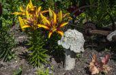 Beton Garten Pilze