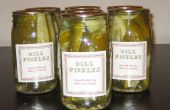 Dill Pickles machen