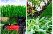 Wie Sie pflegen Ihr Garten wie ein Profi