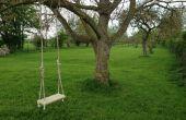 Traditionellen Garten Baum schwingen