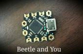 Käfer: Minimieren Sie Ihre Arduino Projekte