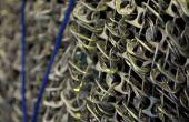 Getränkedose (Knallenoberseite) Kettenhemd - Kategorie ChainTab