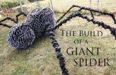 Der Bau einer riesigen Spinne