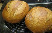 100 % Vollkorn knuspriges No kneten Artisan Brot