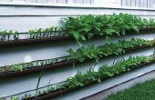 Wie erstelle ich eine hängende Dachrinne Garten