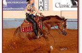Wie trainieren Sie Ihr Pferd ein Reining-Stop zu tun
