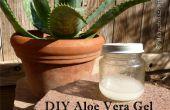 DIY-Aloe Vera Gel