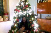Tipi-Weihnachtsbaum