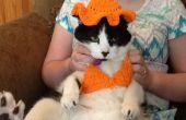 EasyCrocheted Katze Bikini und Sonnenhut