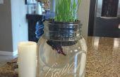 Denken Sie auch schwimmen Aquaponic - wachsen Weizengras