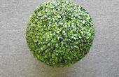 Gewusst wie: eine künstliche Buchsbaum Kugel zu einem Wicker-Pflanzer verankern