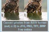 RAW-Konverter: eine kostenlose Software zum Konvertieren von RAW zu JPG