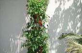 DIY organische vertikale Pflanzer