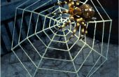 Riesige Spinnennetz machte einen Regenschirm
