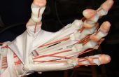 Hand gebaut humanoide Roboter, Teil1: Einführung