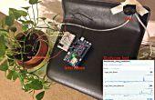 Pflanzen, Überwachung und Pflege - mit Intel Edison