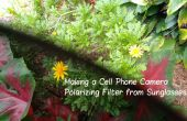 Eine Handy-Kamera Polarisationsfilter von Sonnenbrille