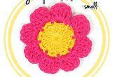 Wie man eine acht-Blütenblatt Blume (#1 - kleine) häkeln