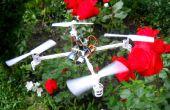DIY-Smart Follow Me Drohne mit Kamera (Arduino basierend)