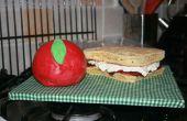 Apple & Sandwich Kuchen