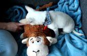 Ein RFID-Hundespielzeug mit Sounds