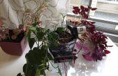 Nachrüstung jeder Pflanzer mit Hydrokultur Bewässerungssystem