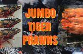 Jumbo-Tiger-Garnelen - auf dem Grill