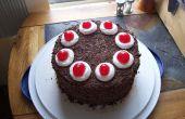 Den perfekten Portal-Kuchen zu machen!