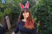Schnelle und einfache Kostüm Tier Ohren