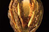 Mit Fusion zu kollaborative Skulpturen mit Bienen machen