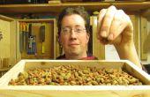 Katze essen Trog aus Palettenholz