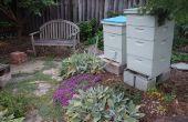 Hinterhof-Bienen in Meine teuflischen Nachbarn