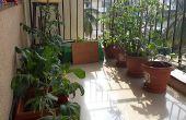 Automatische Bewässerung Pflanzen und Boden Feuchtigkeit spüren
