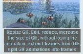 Freeware Gif Resizer für Größenänderung animiertes Gif online