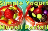 Hausgemachtes Joghurt einfach & Müsli-Parfait-Rezept