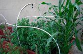 Bauen Sie Ihren eigenen erhöhten Gartenbett! Ihre eigene Nahrung anbauen!