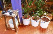 Automatische Bewässerung von Topfpflanzen mit Intel Edison