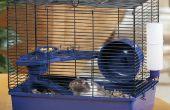 Die wirklich Silent Hamsterrad