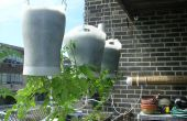 Kopfüber hängen selbst Bewässerung Erde gefüllte Box!